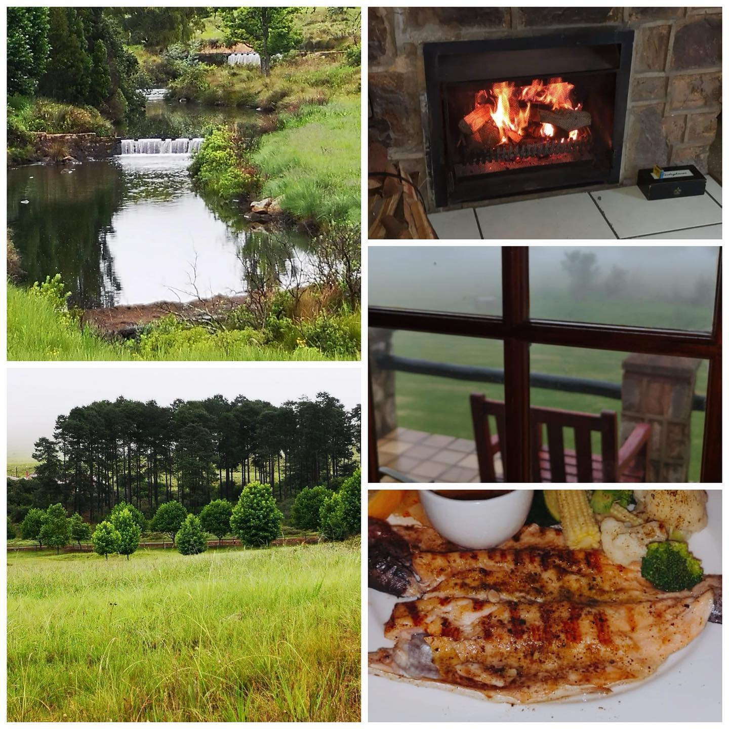 @walkersonshotel in Dullstroom,Mpumalanga. Then specially prepared Trout at the hotel for Dinner ️